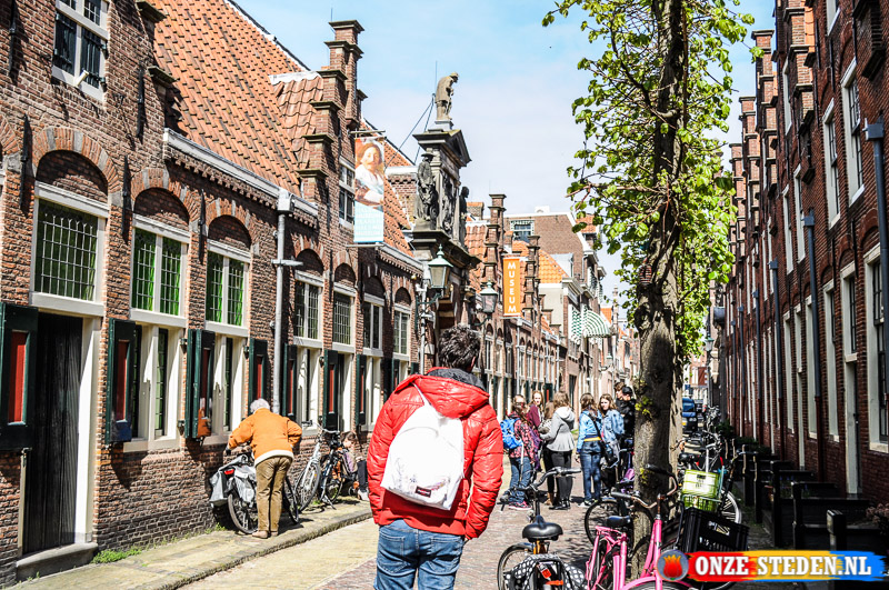 Groot Heiligland in Haarlem