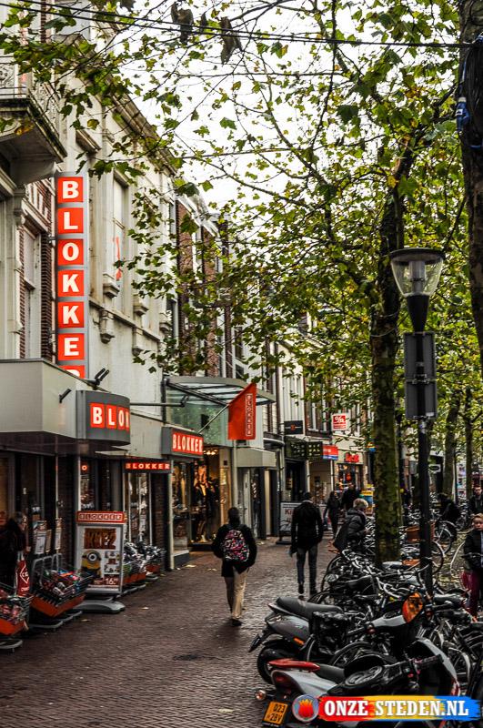De Wirdumerdijk in Leeuwarden