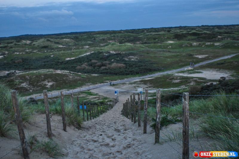 Duinen nabij Zandvoort