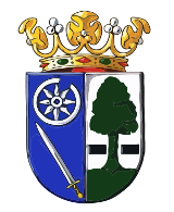 Wapen van Heerenveen